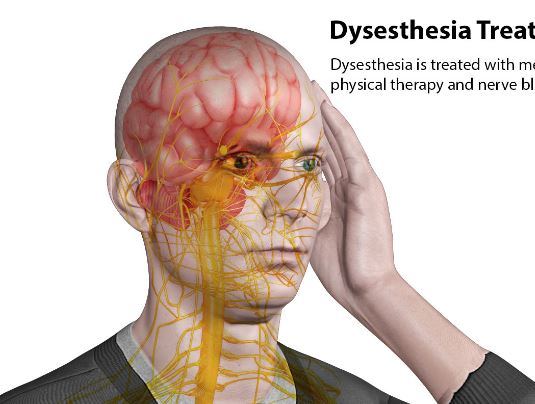 dysesthesia - definition, symptoms, treatment, causes, types, Skeleton