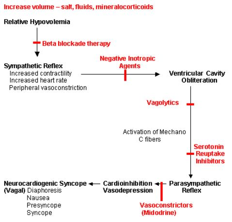 neurocardiogenic-syncope-management-protocol