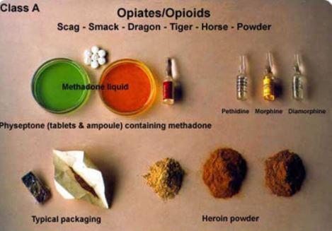 opioids Heroin hydrocodone methadone Morphine